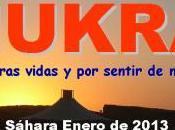 Resumen SHUKRAN enero 2012
