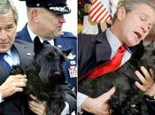 Muere perro expresidente George Bush