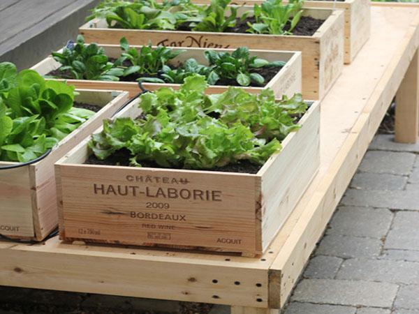 Ideas para decorar t jard n reciclando paperblog for Ideas para arreglar un jardin pequeno