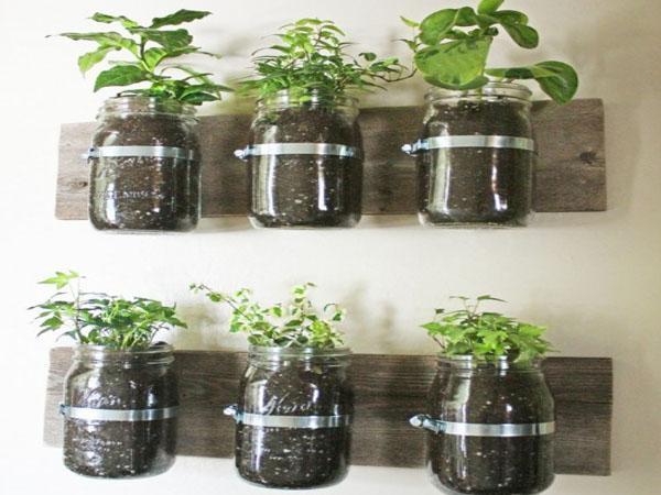 Ideas ecologicas jardin - Ideas para decorar tu jardin ...