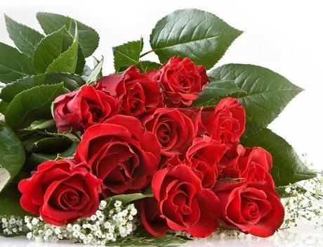 6 soluciones online para mandar flores por San Valentín - Floristerias online - Wild Style Magazine