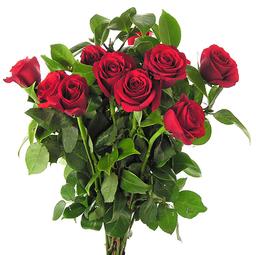 Floresfrescas.com 6 soluciones online para mandar flores por San Valentín - Floristerias online - Wild Style Magazine