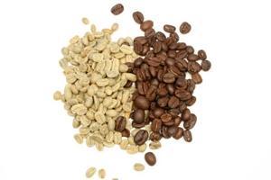 cómo hacer extracto puro de café verde