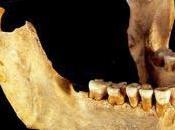 extinción neardentales podría reciente cómo creía