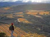 sabático Rioja