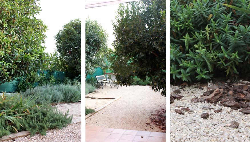 Dise ar jardin sin mantenimiento casa dise o - Jardin sin mantenimiento ...