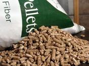 cara biomasa?