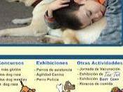 Encuentro Canino Fundación Regálame Sonrisa Venezuela