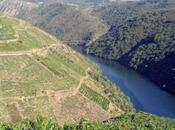 Ribeira Sacra. salto entre Ourense Lugo