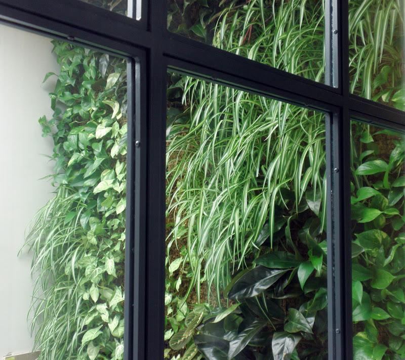 Jard n vertical de interior en madrid paperblog for Jardin vertical madrid