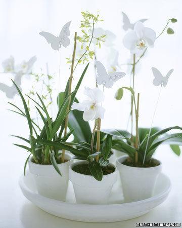 Verde como regalo de boda paperblog for Como se pone ceramica