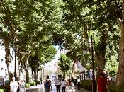 ¿Qué visitar Granada?