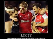 señorío rugby
