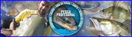 GUIA DE PESCA DEL SILURO AL PELLETS 2013 GUIA DE PESCA DEL SILURO AL PELLETS 2013