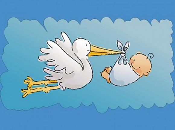 Imágenes De Cigüeñas Y Bebés