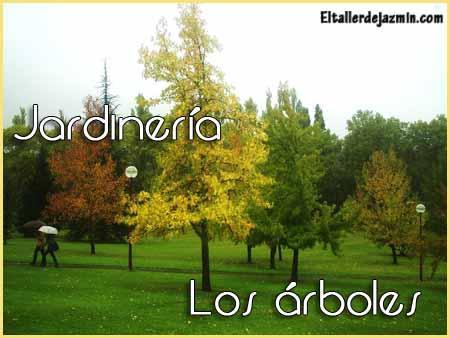 Jardiner a los rboles paperblog for Arboles jardineria