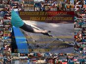 """Exposición fotografías: """"Pesca Cristianos"""""""