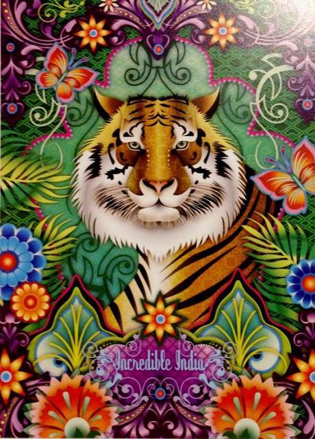 'Incredible India' - Catalina Estrada (Colombia)