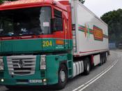 Borrachito camión