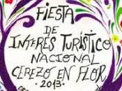 Programa Cerezo Flor 2013
