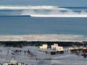 años después: Lecciones tsunami Tohoku, Japón