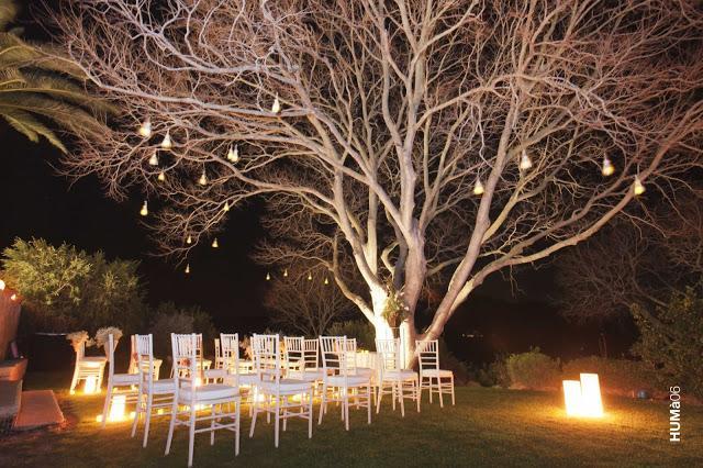 Love weddings decoraci n de exterior paperblog - Plantas secas decoracion ...
