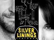 LADO BUENO COSAS, (Silver Linings Playbook) (USA, 2012) Comedia