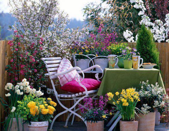 Consejos para elegir las plantas de tu balcón o terraza