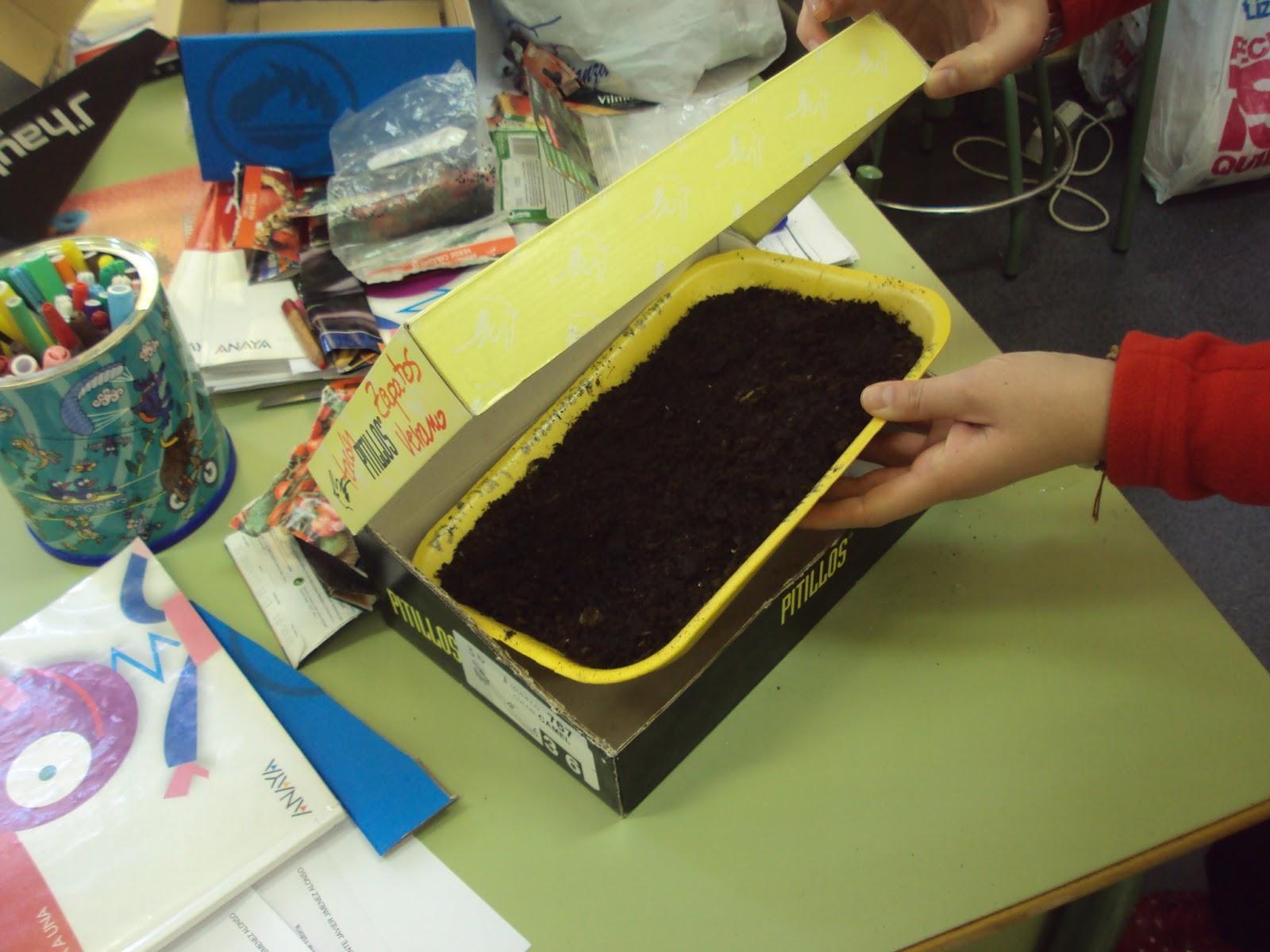 Min invernadero para hacer en clase paperblog - Mini invernadero casero ...