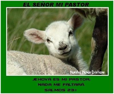 976ea538d4 El señor mi pastor - Paperblog