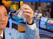Grupo investigadores logra generar hidrógeno partir cual planta, creando energía segura renovable