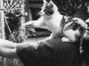 Adiós Kurt Cobain: años después