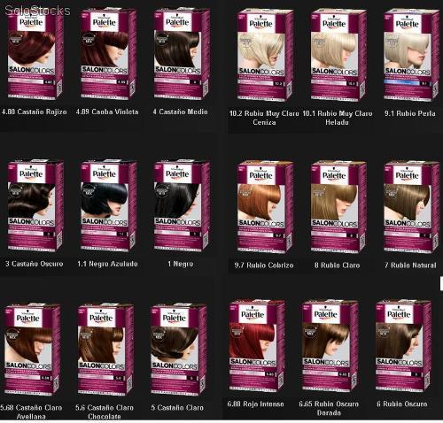 palette salon colors de schwarzkopf un nuevo tinte con On palette salon colors
