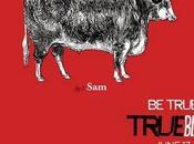 True Blood Season única serie vampiros