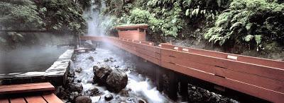 Proyecto de Germán Del Sol: Termas Geométricas. Parque Nacional Volcán Villarrica- Chile