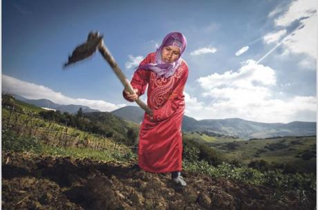 Primavera árabe: el mundo rural tunecino se resiente tras años de dictadura Cambios para las mujeres rurales de Túnez