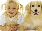 Verdades nutrición perro, mascotas también personas