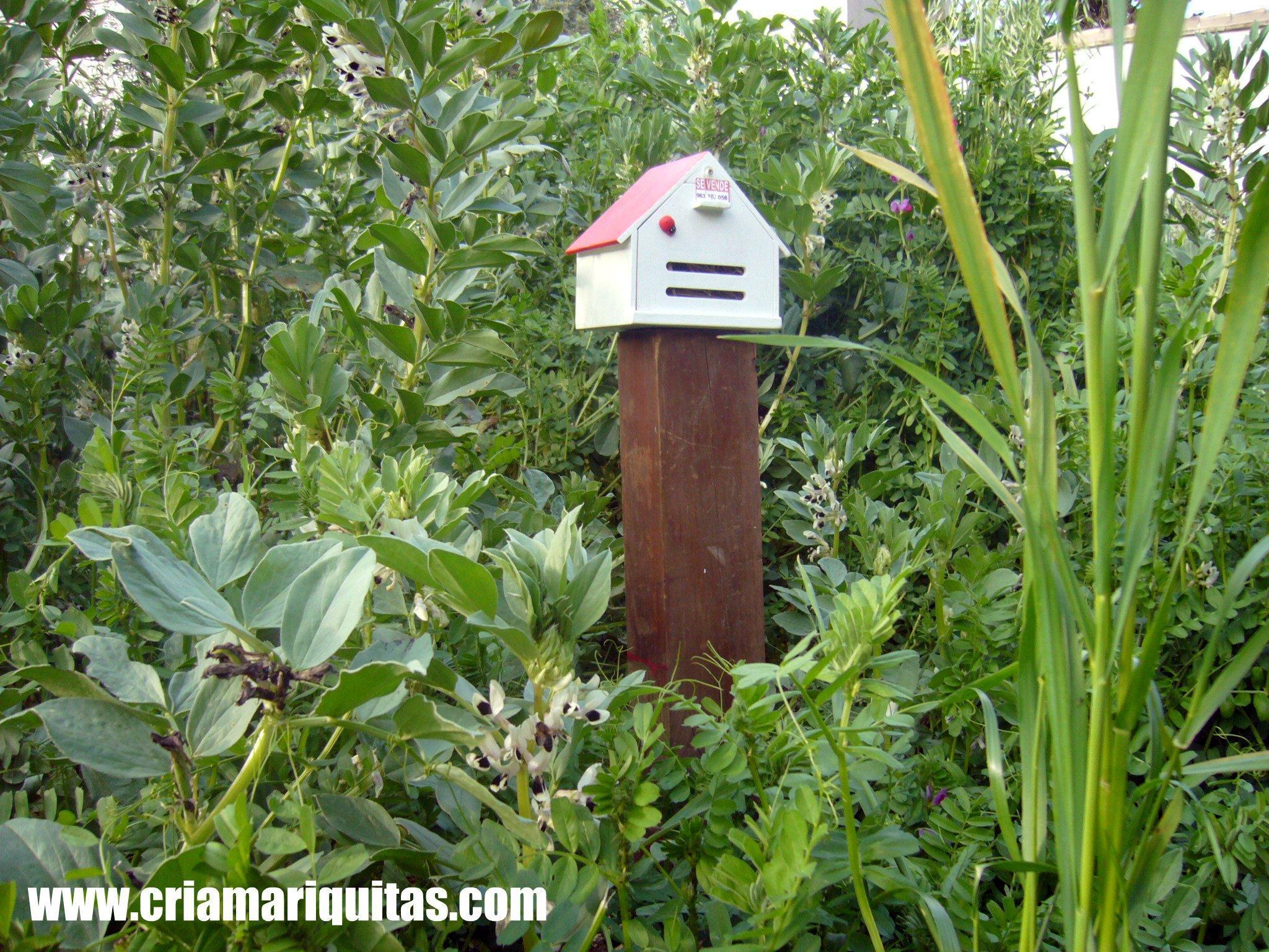 Mariquitas casas paperblog for Modelos de jardines en casa