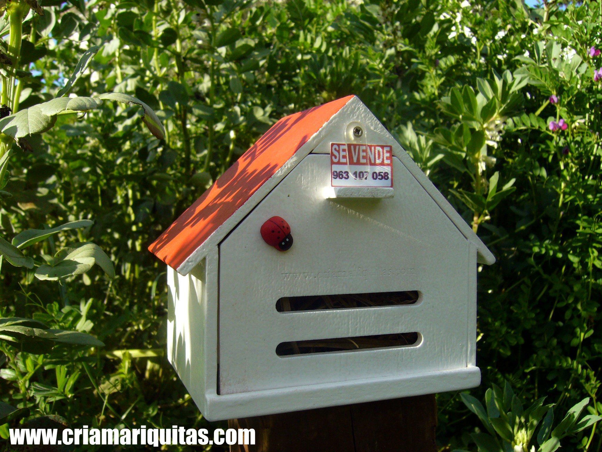 Mariquitas casas paperblog for Modelos de jardines para casas