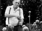 amable Charles Bukowski