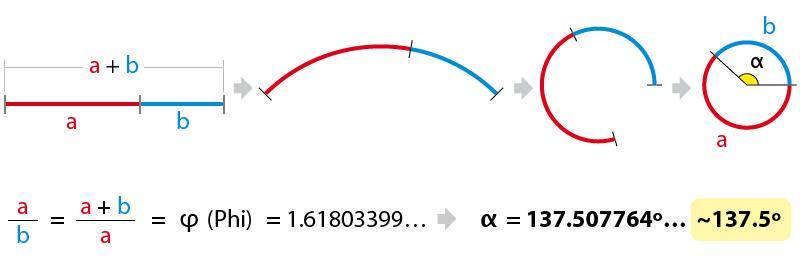Resultado de imagen de los fotones saltarines que hacen girar la rueda de la existncia