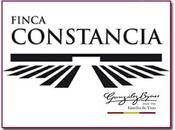 Finca Constancia logra excelentes puntuaciones Wine Advocate