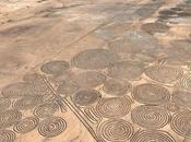 Aparecen Crop Circles parecidos líneas Nazca, África