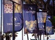 Restaurante Trocadero Playa Marbella