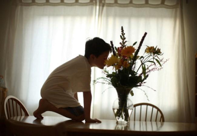 Echolilia: El universo de un niño autista 13