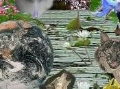 mayo 2013 internacional biodiversidad. unesco