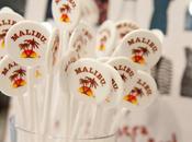 Gana Malibu cheque euros para gastar Mango