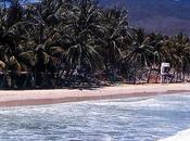 Margarita, playa guacuco