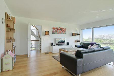 Moderna villa danesa de tres pisos paperblog for Casas nordicas decoracion
