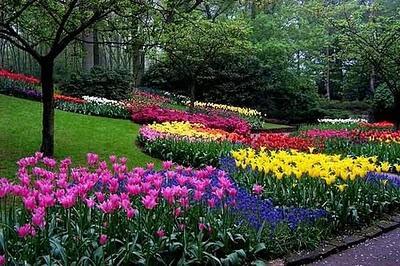 El cuidado de las plantas y el jardin colores en el jard n for Banderas decorativas para el jardin